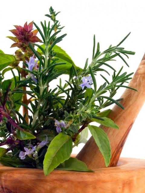Βότανα και αρωματικά
